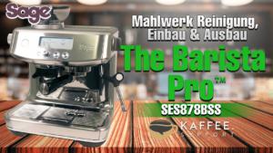Sage The Barista Pro™ SES878BSS Reinigung Mahlwerk